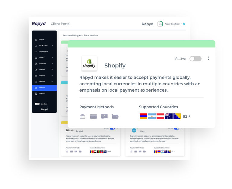 Get started with the International Shopify Payment Plugin